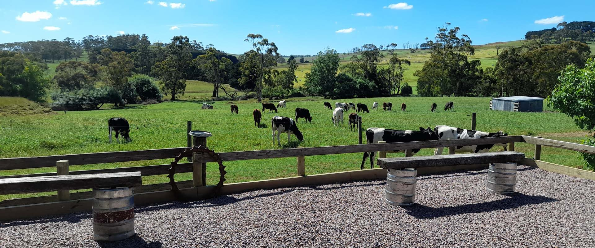 Dairylicious Farm Fudge - View from the Gate